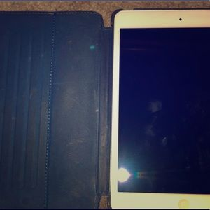 Apple iPad Mini with Case